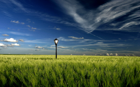 Lamp_in_the_Field_by_chonny.png